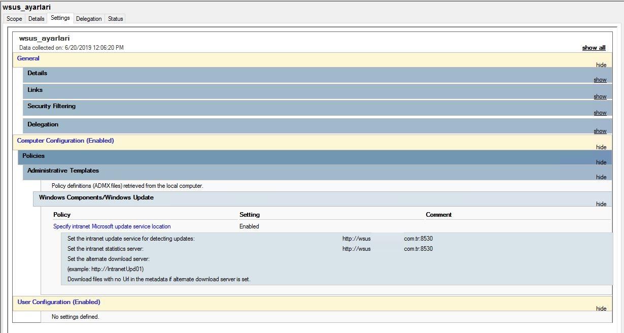 Windows Server 2012 R2 WSUS Kurulumu 37