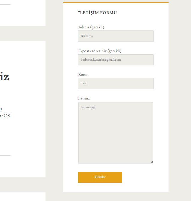 Wordpress Contact Form 7 Eklentisi 8