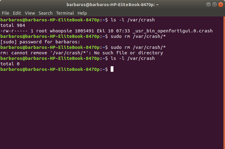 Ubuntu System Program Problem Detected