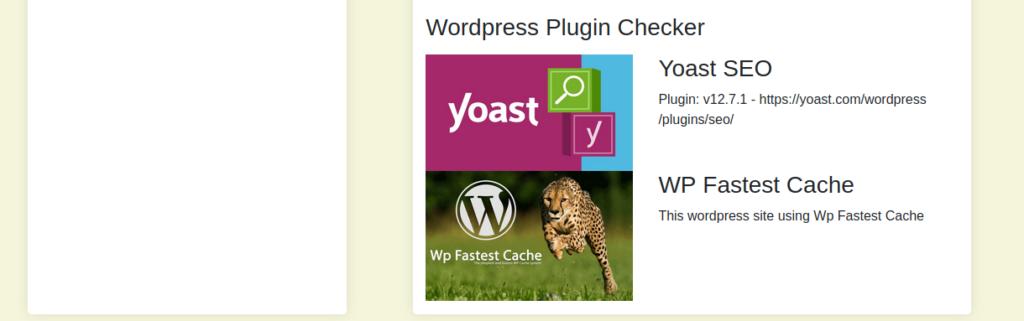 Wordpress Sitelerde Report WP Tool Kullanımı