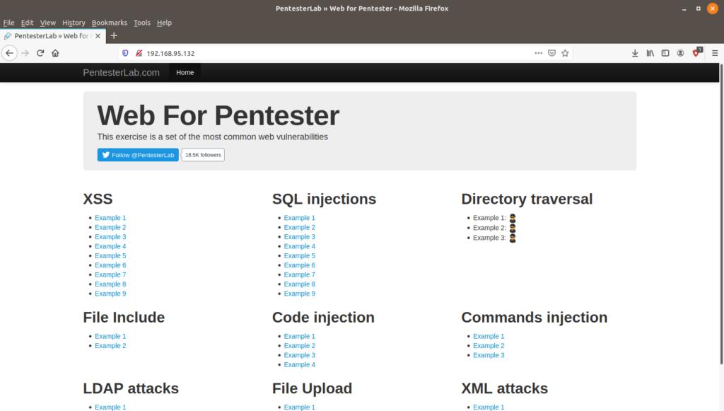 PentesterLab - Web Güvenlik Testi