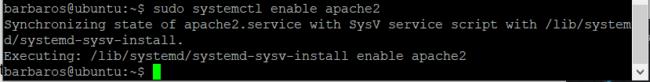 Apache web server kurulumu