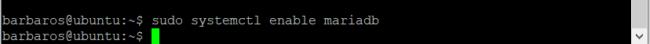 MariaDB kurulumu
