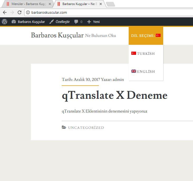 Wordpress qTranslate-X Eklentisi